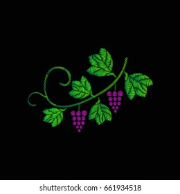 A vine with bunches of grapes. Embroidery of jeans. Embroidery is smooth. Vector illustration on a black background
