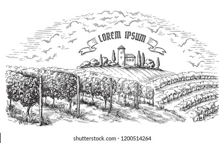 vine plantation hills, trees, clouds, and ancient castle on the horizon vector illustration