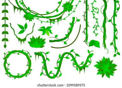vine set vector