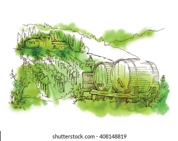 Vineyard. Hand drawn sketch of vineyard landscape. Vector illustration. Line art sketch of vineyard with watercolor texture background.