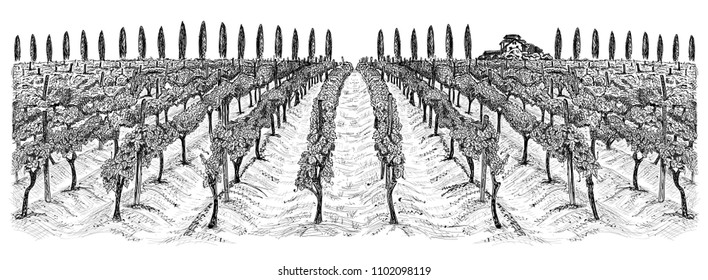 Vineyard landscape with building on the hill and trees beside. Hand drawn horizontal sketch vector illustration isolated on white