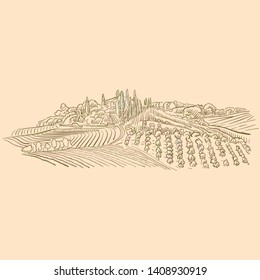 Vineyard Landscape drawing, brown colored version for Apps, Print or web backgrounds