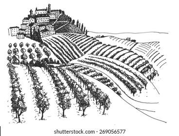 vineyard landscape ink pen picture - vector