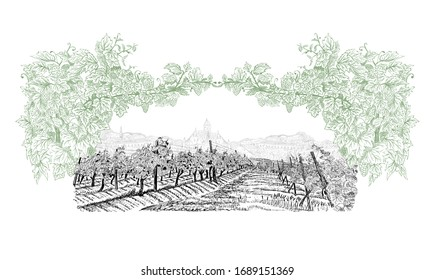 Vineyard with old town on horizon inside of decorative arc from grapes and vines. Landscape hand drawn in sketch style. Vector illustration isolated on white