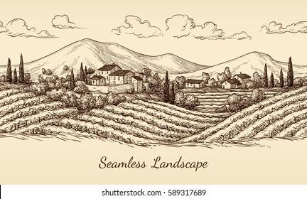 Vineyard seamless landscape. Vine sketch isolated on white. Hand drawn vector illustration.