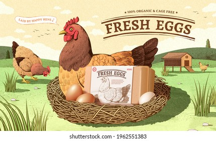 Vintage ad template for fresh farm product in engraving design. A happy hen sits on a nest with egg box mock up. Concept of free range chicken and fresh farm egg.
