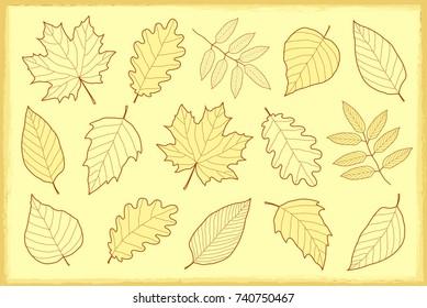 vintage artistic set of autumn leaves silhouettes