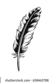 Vintage black feather isolated on white background