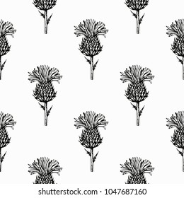 Vintage black and white seamless pattern with hand drawn thistle flowers. Vector illustration.