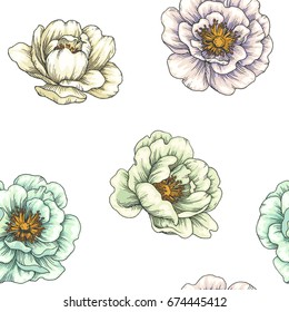 Vintage botanical seamless pattern. Vector color hand drawn illustration of hip rose. Floral texture. Background with wild briar flowers. Sketch style