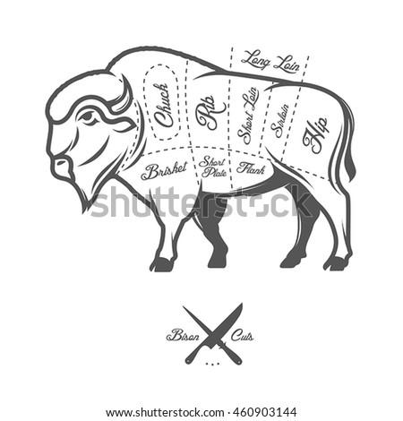 Vintage Butcher Cuts Bison Buffalo Scheme Stock Vector Royalty Free