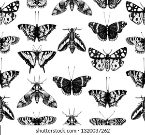Vintage butterflies seamless pattern. Vector background with high detailed insects sketches. Hand drawn illustrations. Vintage entomological drawings. Black and white art