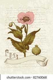 Vintage Card with Poppy flower- for invitation, greetings, congratulation, wedding