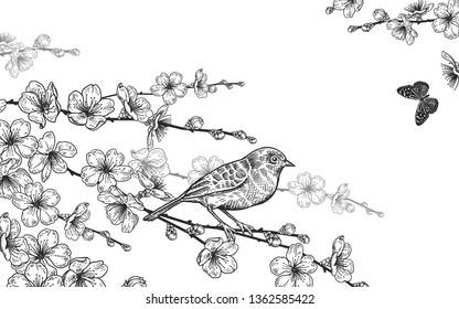 Vintage card. Vector illustration of spring nature. Floral background. Branches of a Japanese cherry tree, bird and butterflies. Black and white.