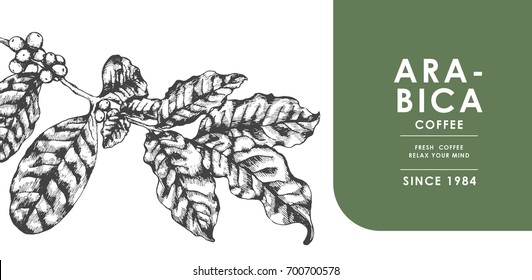 Vintage Coffee leaf for Banner and Advertising by Cross hatching, Contour hatching Pen ink sketch drawing technique. Vector and illustration.