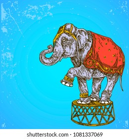 Vintage colorful background. Circus elephant. Color card. Engraving style. Vector illustration.