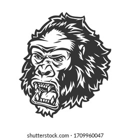 Vintage concept of angry gorilla head on white background isolated vector illustration