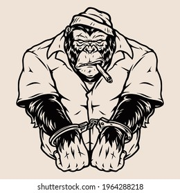 Vintage concept of angry handcuffed gorilla in prisoner uniform and cap smoking cigar in monochrome style isolated vector illustration