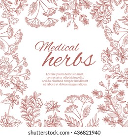 Vintage decorative background with medicinal organic healing plants. Medical herb banner template with herbal botanical flower. Vector illustration