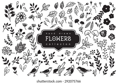 Vintage decorative flowers and birds set. Hand drawn vector design elements