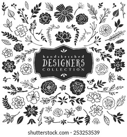 Vintage decorative plants and flowers collection. Hand drawn vector design elements