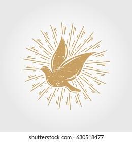 Vintage dove with sunburst. pigeon logo symbol