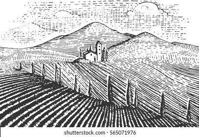 Vintage engraved, hand drawn vineyards landscape, tuskany fields, old looking scratchboard or tatooo style wine company bottle design