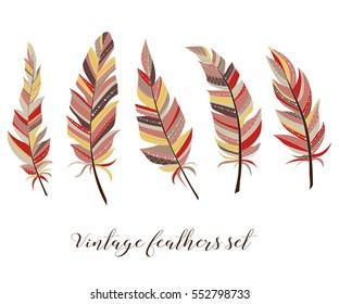 Vintage feathers set. Five elegant feathers of boho style on a white background.