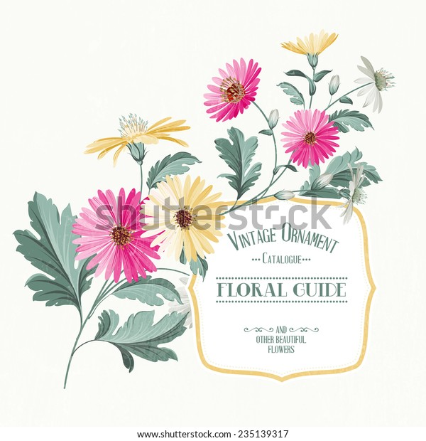 Vintage Flower Card Print Color Chrysanthemum Stock Vector (Royalty Free)  235139317