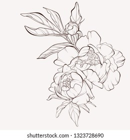 Vintage flower vector card drawing. Peony sketch composition. Engraved botanical bouquet. Hand drawn floral wedding invitation, label template, anniversary card.