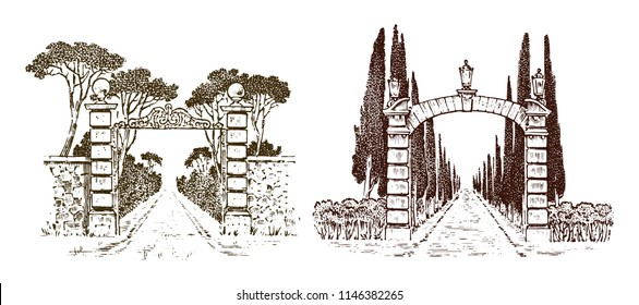 Vintage gates. Victorian doors or an ancient arch. Entrance to the garden or the park in the background of trees. Engraved hand drawn old sketch. Vector illustration