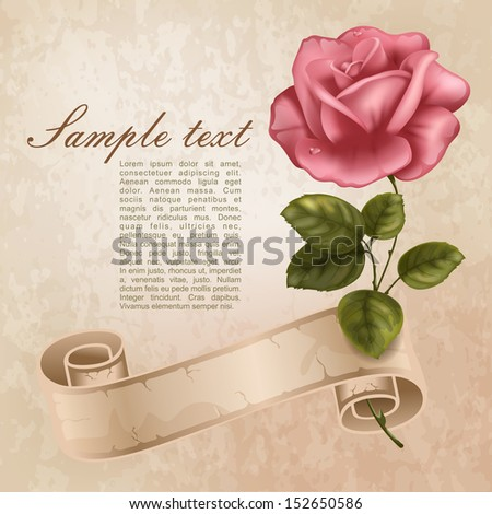 Vintage Greeting Cards Beautiful Rose Stock Vector Royalty Free