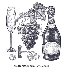 Vintage hand drawing on subject of alcohol. Bottles with champagne, grapes, wine glass with drink, ice slices and corkscrew. Isolated black image on white background. Vector illustration art.