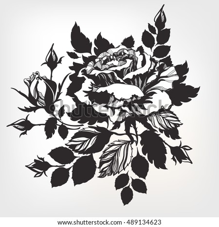 vintage hand drawn rose detailed petals stock vector royalty free
