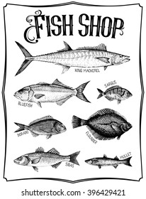 Vintage hand drawn vector poster with different type of fishes. Fish shop