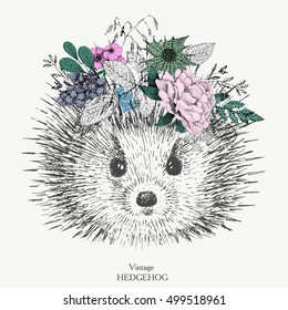 vintage hedgehog with a wreath on her head of flowers.vector.print on t-shirt