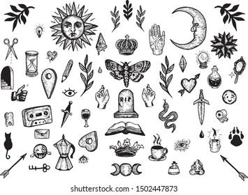 Vintage illustration clipart graphics bundle