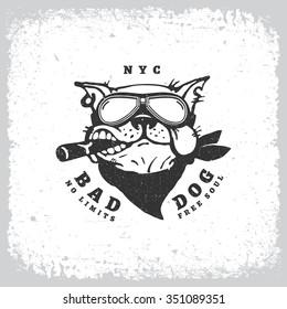 Vintage label with bulldog in goggles on grunge background for t-shirt print, poster, emblem. Vector illustration.