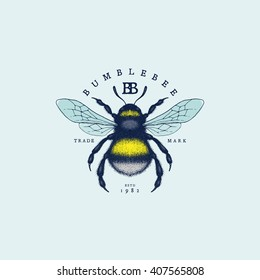 Vintage label with hand drawn sketch of bumblebee. Vector illustration.