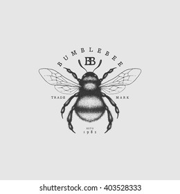 Vintage label with ink hand drawn sketch of bumblebee. Vector illustration.
