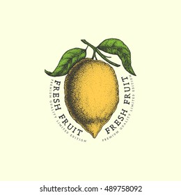 Vintage label with ink hand drawn sketch of lemon. Vector illustration.