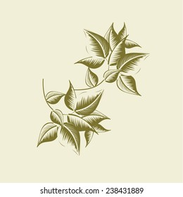 Vintage leaves style