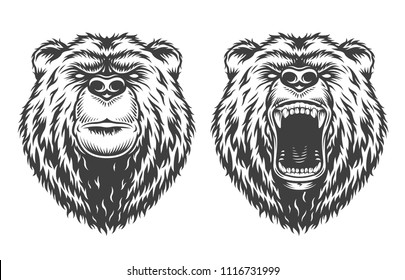 Vintage logo style angry and serious bears. Vector illustration