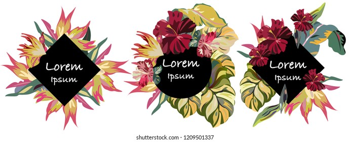 Vintage logos with tropical flowers and exotic leaves. Floral logos set with hibiscuses.