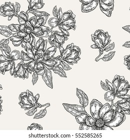 Vintage magnolia flowers, buds and leaves. Vector seamless pattern. Illustration for fabrics, gift packaging, textile and card design