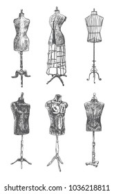 Vintage mannequin set. Tailor's dummy for female and male body. Retro Illustration in ancient engraving style