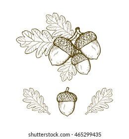 Vintage oak leaf and acorn