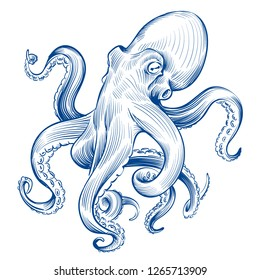 Vintage octopus. Hand drawn squid engraved ocean animal. Etching octopus vector illustration