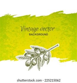 Vintage olives hand drawn graphics, label