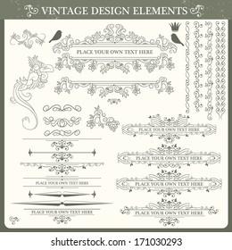 Vintage ornament set. Vector illustration